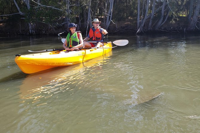 That face you make when the manatee are bigger than your kayak
