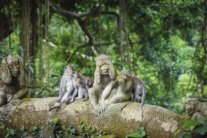 Bali Tour All Inclusive Ubud Rice Terraces, Temples & Volcano