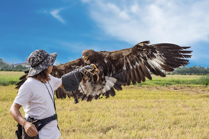 South Shore of Issyk-Kul Tour with Eagle hunting demonstration