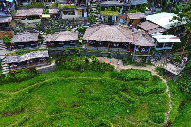 Art Galleries of Celuk and Mas Village with Beautiful Rice Terrace View