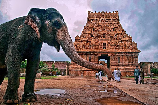 14-Days Classical South India trip from Chennai by Wonder tours