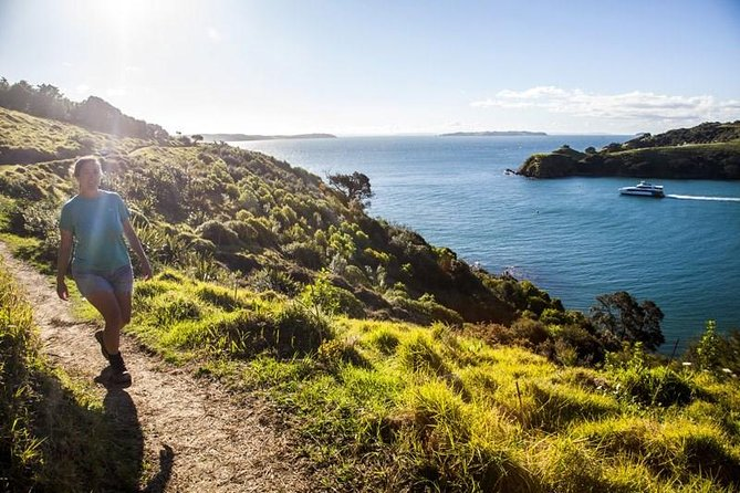 Waiheke Bird And Nature Tour 4 Hours