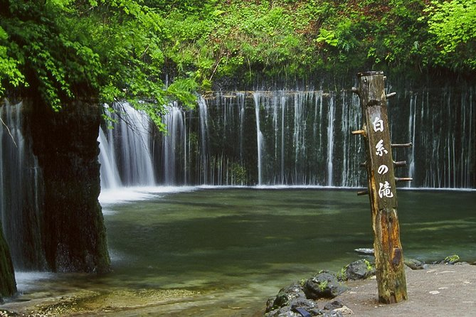 Relax and refresh in Karuizawa Forest! Shinanoji down trekking around two people