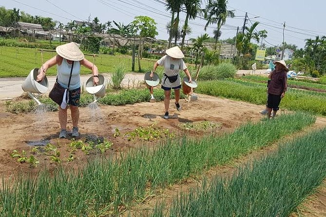 Fullday Tour to visit Marble Mountain & Experience Daily Life of Hoi An People photo 20