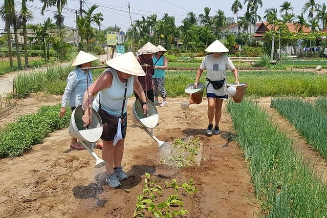 Fullday Tour to visit Marble Mountain & Experience Daily Life of Hoi An People photo 3