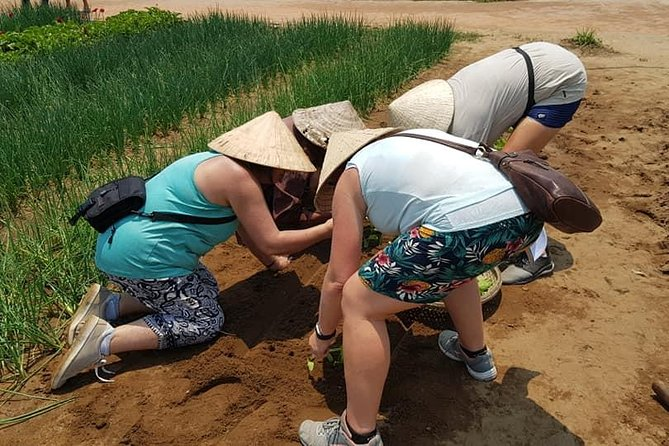 Fullday Tour to visit Marble Mountain & Experience Daily Life of Hoi An People photo 10