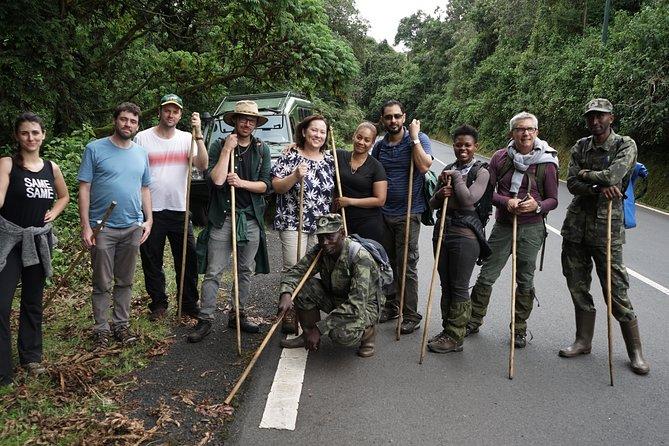 2 Days Chimpanzee Tracking in Nyungwe National Park Rwanda.