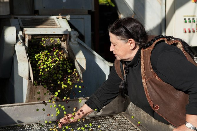 Sabina Dop Olive Oil Tour In The Roman Countryside photo 2