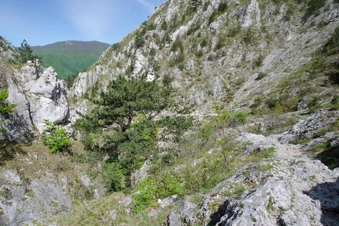 Private Day Hiking Trip to Tesna Gorges from Timisoara