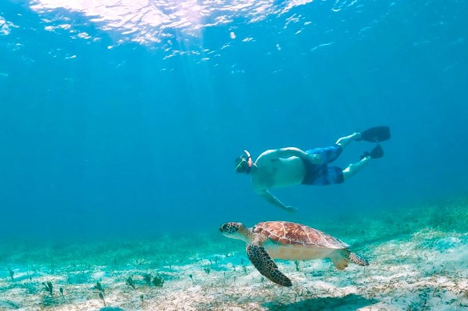 Culebra Island Kayak and Snorkel Morning Adventure
