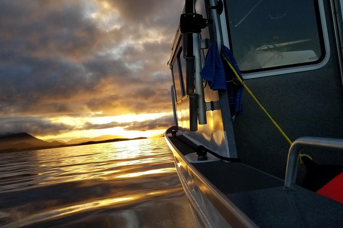 Family or Small Group Sightseeing, Wildlife and Whale Watching Tour - six person