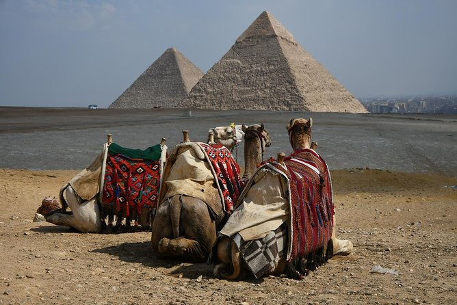 Pyramids & Sphinx Half Day Tour from any hotel