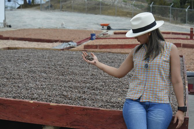 Full Day: Churute Forests & Cocoa Farm Tour (Departure from Guayaquil) photo 2