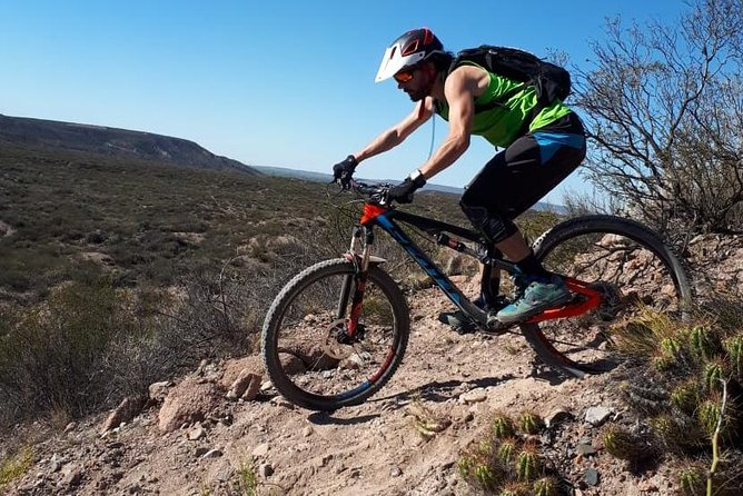 Mountain Bike Tours (Mendoza)