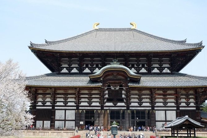 Nara Private Tour by Public Transportation from Kyoto