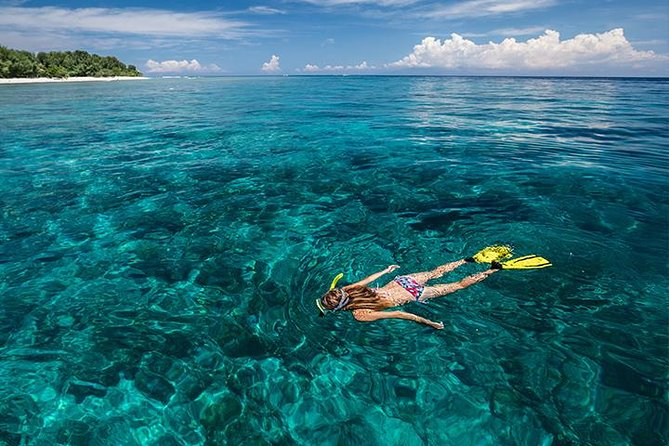 Snorkeling Expedition Crystal Bay Nusa Penida Island