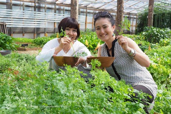 -Taste the seasonal taste of Karuizawa-Karuizawa gourmet farm pottering