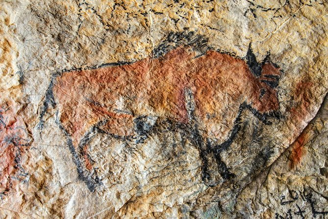 Half Day Tour Lascaux IV from Sarlat photo 2
