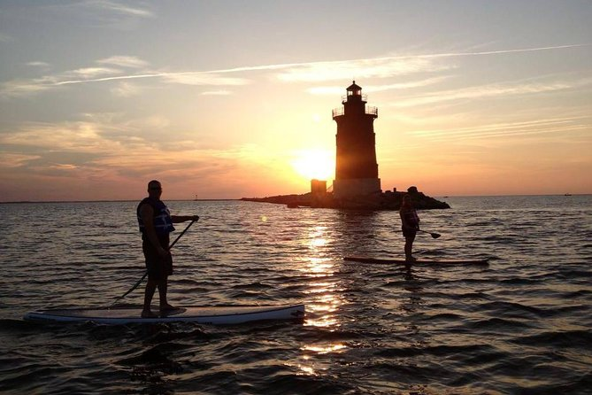 Evening Dolphin Paddle Board Excursion on Delaware Bay photo 7