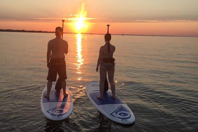 Evening Dolphin Paddle Board Excursion on Delaware Bay photo 10