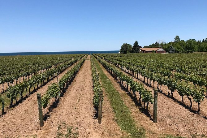 Full-Day Niagara-On-The-Lake Guided Wine and Charcuterie Tour