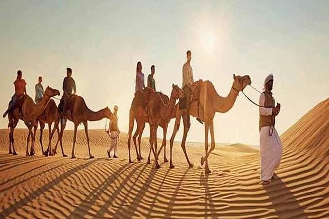 Morning Desert Safari With Camel Ridding