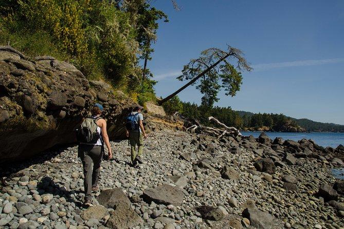 Eco Hiking Tour Near Victoria BC