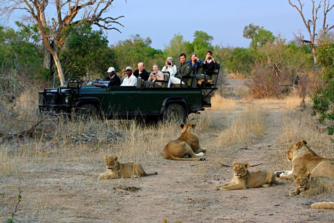 Cape Town Private Tour , The best of Big Five Safari photo 8