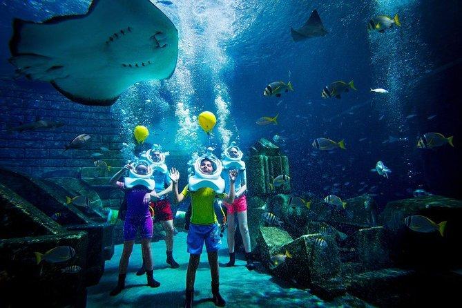 Dubai City Tour with Dubai Aquarium & Underwater Zoo Entry Tickets