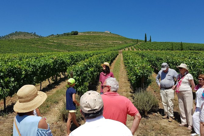 Douro Valley Historical Tour with Lunch, Winery Visit with Tastings and Panoramic Cruise