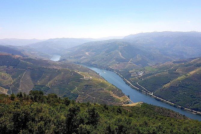Excursão de dia inteiro em Douro com almoço