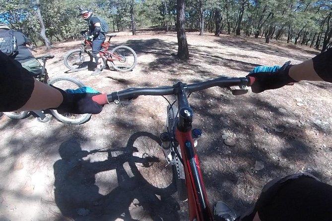 Mountain bike in the Spring
