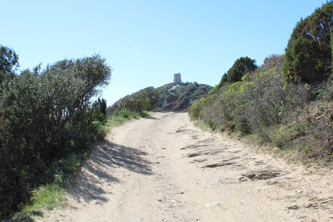 Cagliari: Hiking at the Ancient Roman Road from Chia photo 13