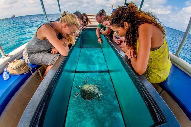 1 hour Narrated Glass Bottom Reef tour to Klein Bonaire 2020