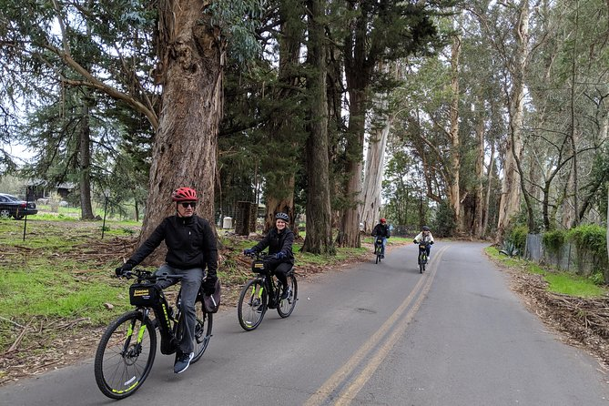 Half-Day Sonoma Valley Bike and Wine Tour (E-bike or Regular) photo 11