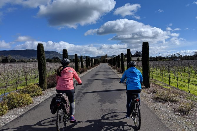 Half-Day Sonoma Valley Bike and Wine Tour (E-bike or Regular) photo 8
