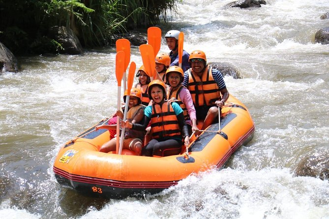 Bali Rafting with Lunch and Transport