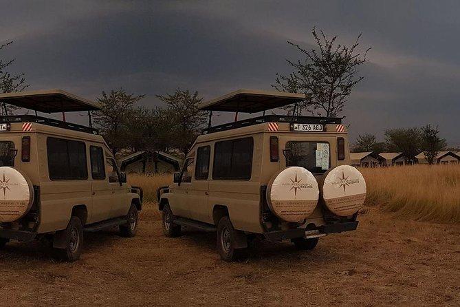 3-Day Two Nights Full Game Drive Serengeti Safari
