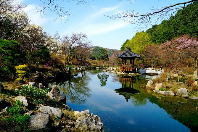 Nami Island - Petite France - Garden of Morning Calm- Group joined tour