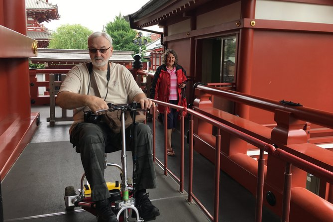 Full-Day Accessible Tour of Tokyo for Wheelchair Users