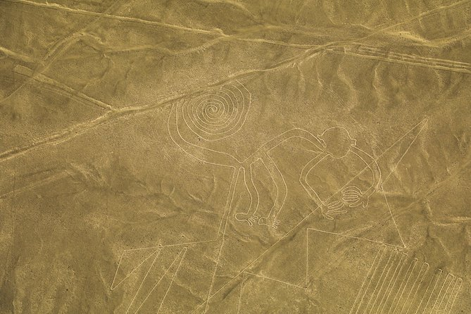 Nazca Lines from Ica airport