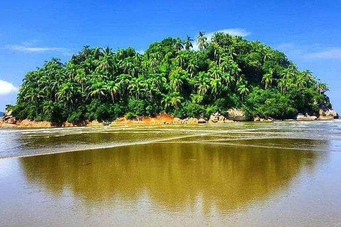 Santos: Full Day Beaches Experience
