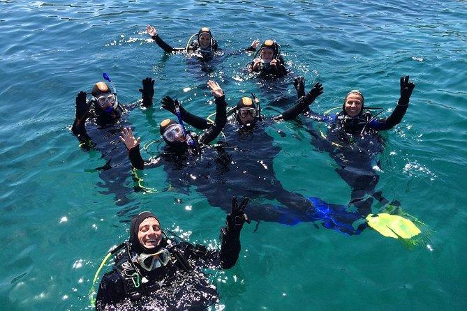 Try Scuba Diving! - Crikvenica/ Krk island