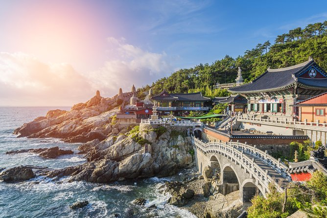 Cruise Layover: Full-day Customizable Private Busan Highlight Tour