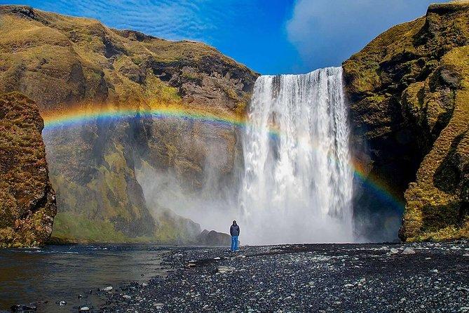 Southern Coast, Waterfalls & Black Beach Full-Day Bus Tour from Reykjavik