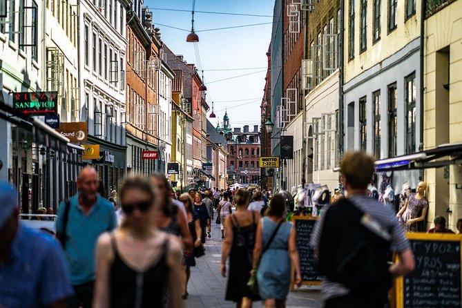 Copenhagen City Private Walking Tour