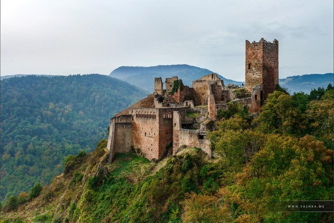 Day trip from Baden-Baden to Alsace: Colmar, Riquewihr, Alsace Wine Route