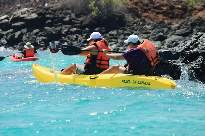 Private Tour: Kayak Itabaca Channel & Tortois Natural Reserve, Galapagos