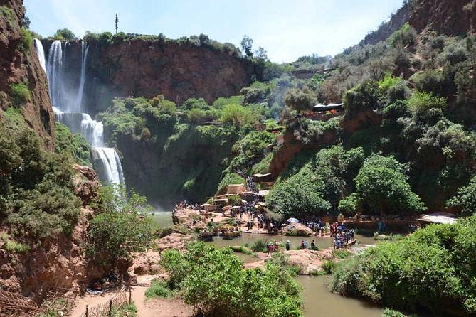 Day Trip to Ouzoud Waterfalls from Marrakech photo 6