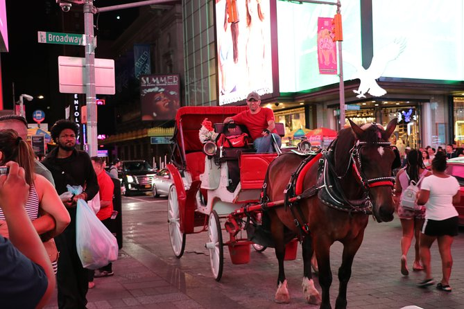 Central Park, Rockefeller & Times Square Horse Carriage Ride photo 9